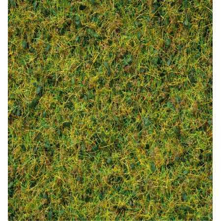 """Grass Blend  """"Cow Pasture"""""""