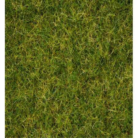 """Grass Blend  """"Summer Meadow"""""""