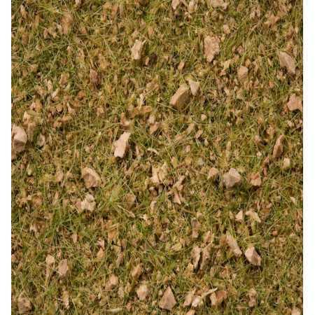 """Grass Blend  """"Alpine Meadow"""""""