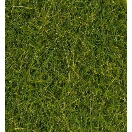 Wild Grass XL Light Green