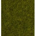 """Wild Grass """"Meadow"""""""