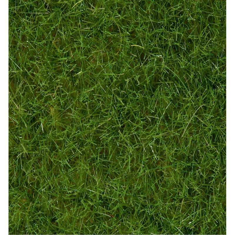 Wild Grass Light Green