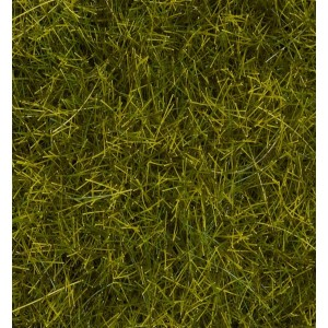 "Wild Grass XL ""Meadow"""