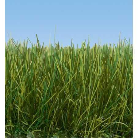 Wild Grass XL Beige
