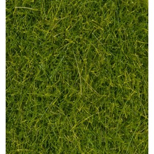 Wild Grass XL Light Green