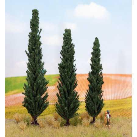 Cypresses, 3 unidades com 10,11 e 13 cm