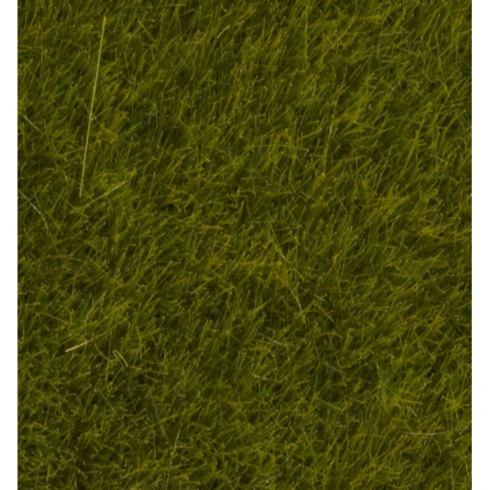 "Wild Grass ""Meadow"""