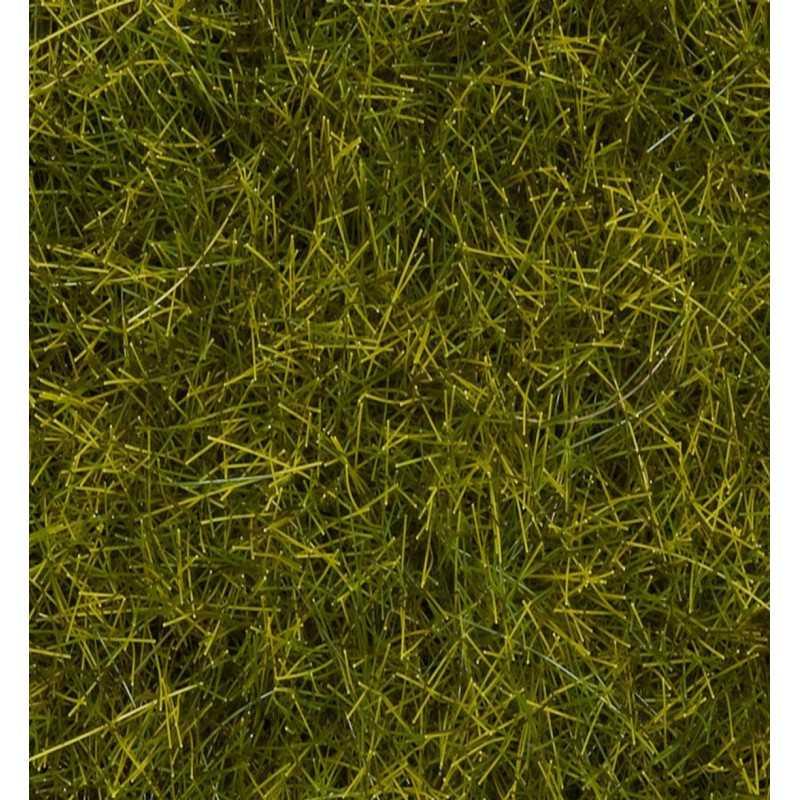 "Wild Grass XL ""Meadow"""