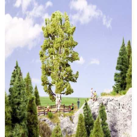 Árvore de tronco duplo