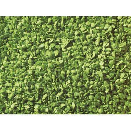 07152 Folhas verde claro